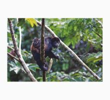 Howler monkey and baby Kids Clothes