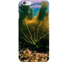 The Weirwater iPhone Case/Skin