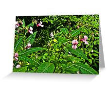 Forest Flower 2 Greeting Card