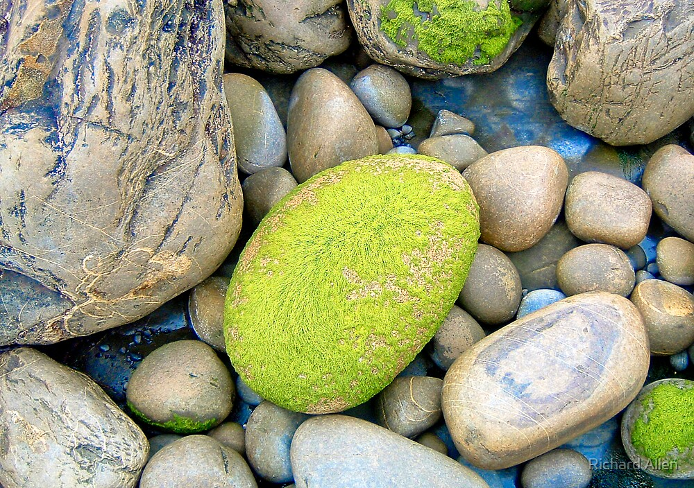 Rocks by Lea Valley Photographic