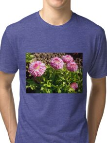 Lovely small flowers Tri-blend T-Shirt