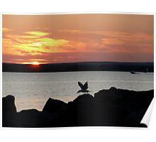 Naragansett Bay, Rhode Island - The Summer Flies By! Poster