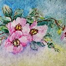 Cherry Blossoms  by Susan S. Kline