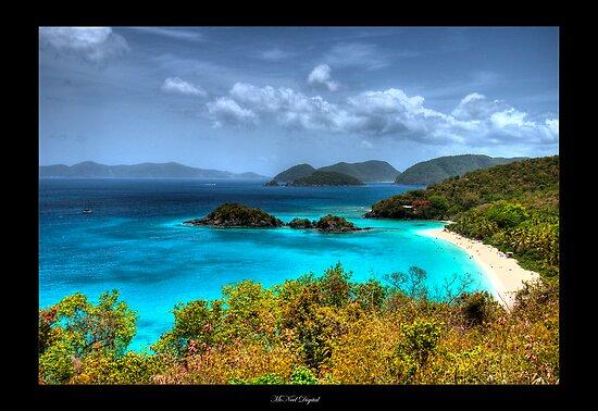 Choose Paradise by L M