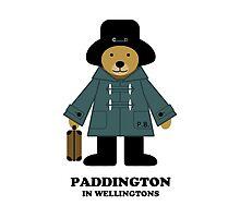 Paddington Bear 1 by povalyaeva