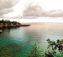 Panoramic view , Westend Jamaica by Allybally62