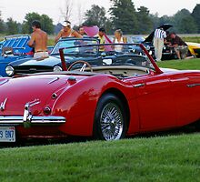 1959 AUSTIN HEALY..Eye Candy for the ultimate sports car lovers... by Larry Llewellyn