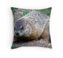 Chuck, the Groundhog Throw Pillow