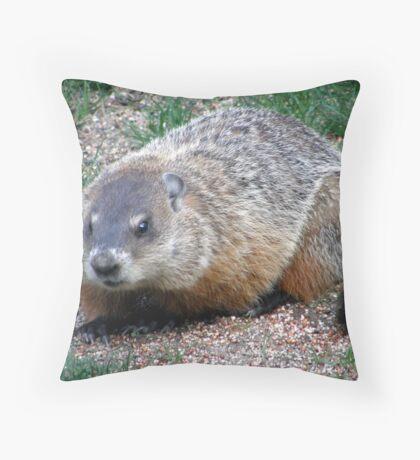 Chuck, the Groundhog Throw Pillow