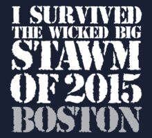 Original 'I Survived the Wicked Big Stawm of 2015 Boston' T-shirts, Hoodies, Accessories and Gifts by Albany Retro