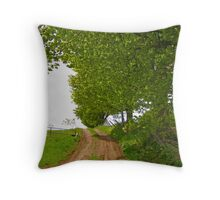 Road  Throw Pillow