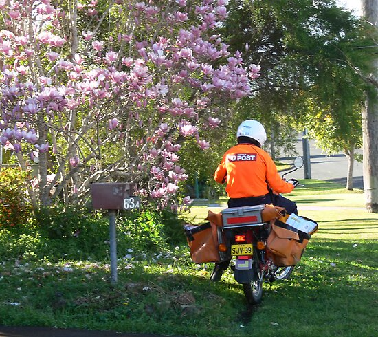 Postie delivering mail near a Magnolia !!! by Heabar