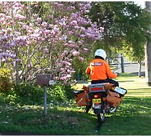 Postie delivering mail near a Magnolia !!! Photographic Print