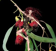 Red Gum Fairie - A collaboration with Rose Moxon by Steven  Agius