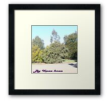 Trees Galore!!!!!!!!! Framed Print