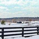 Winter Wonderland by mcstory