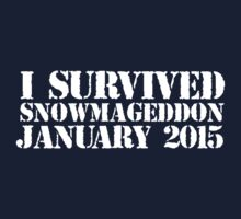 Original 'I Survived Snowmageddon January 2015' T-shirts, Hoodies, Accessories and Gifts T-Shirt
