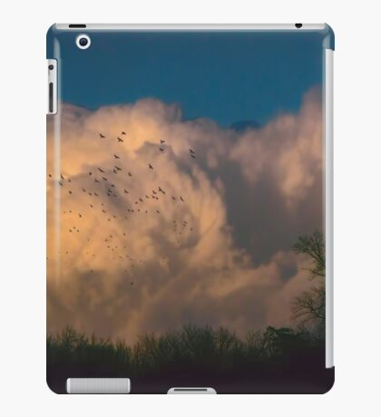 Warm Dusk iPad Case/Skin
