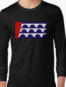 des moines city flag Long Sleeve T-Shirt