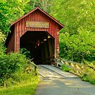 Covered Bridges by Mary Carol Story