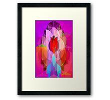 PopDecO Framed Print