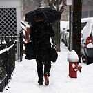 Through The Snow by Louis Galli