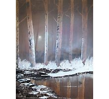 """Winter woodland 2"" Photographic Print"