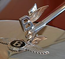 """The only difference is the hood ornament"" > by John Schneider"