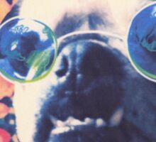 The Grooviest Pug on Earth Sticker