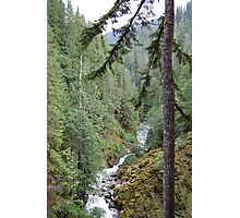Nooksack River Photographic Print