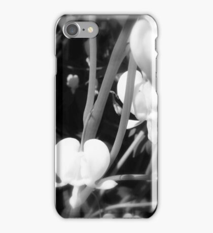 white bleeding heart macro, black and white iPhone Case/Skin