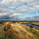 Tollesbury Wick Marshes  by Susan E. King