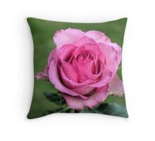 Pink Rose in HDR Throw Pillow