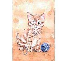 Kitten With Yarn Photographic Print