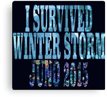 I Survived Winter Storm Juno 2015 Canvas Print