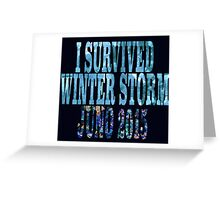 I Survived Winter Storm Juno 2015 Greeting Card