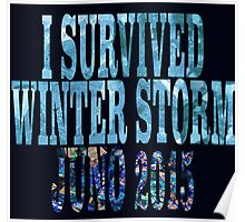 I Survived Winter Storm Juno 2015 Poster