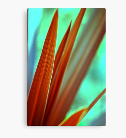Red Spear 2 Canvas Print