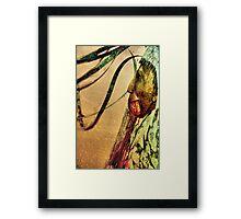 Native Pride Framed Print