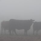 Foggy Congregation by Garret