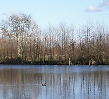 Wintry Lake by g369