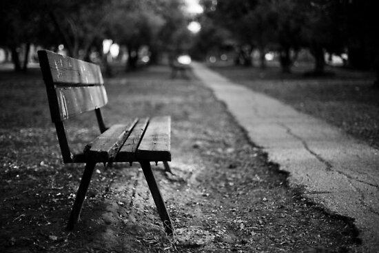 bench in park by Victor Bezrukov