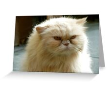 Sour Puss Greeting Card