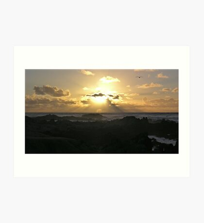 PG GOLDEN SUNSET WITH GULL Art Print
