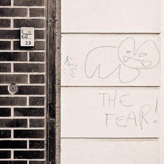 meet the fear by Markus Mayer