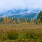 Autumn landscape near Bright, Victoria. by johnrf