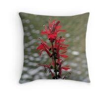 Cardinal Flower and Guest Throw Pillow