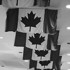 Canadian flags by Karla76