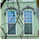 Windows by Sandra Guzman