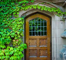 The Reflecting Door of Knowledge by Mary Campbell